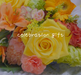 celebrationgifts